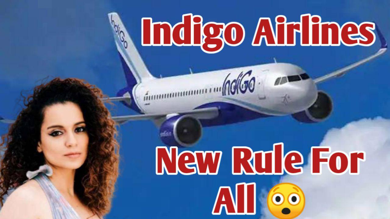 Indigo Latest News